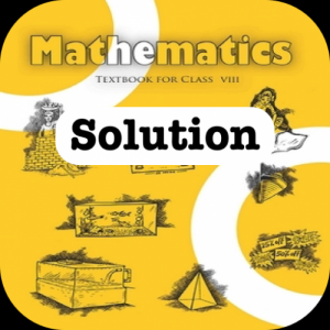 Class 8 Maths NCERT Solution Icon
